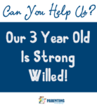 8 Ways To Help You And Your Strong Willed Child
